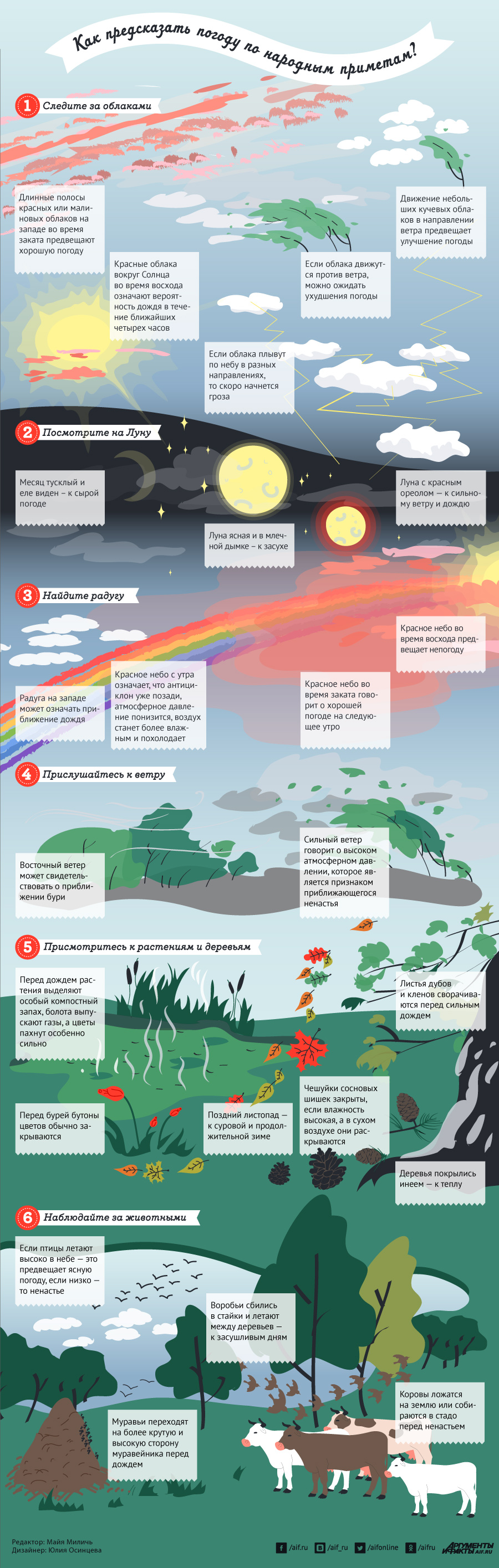 Инфографика - предсказание погоды по народным приметам