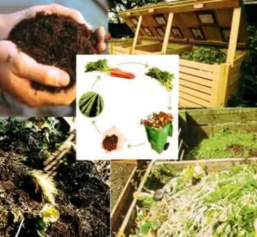 Компост - это экологическое удобрение.